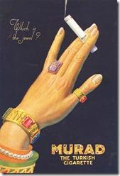 11577_murad8