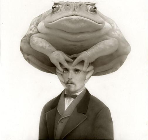 116881_frog