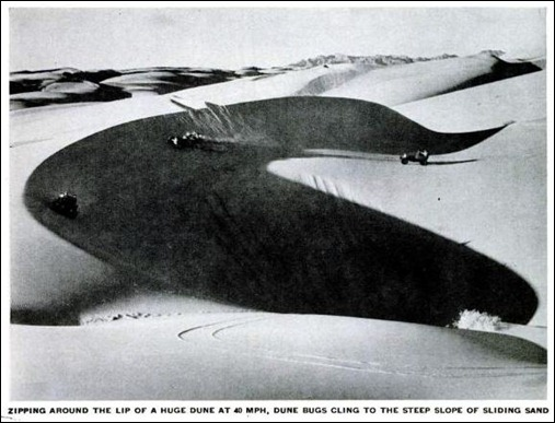 dune bugs LIFE 19 jul 1954 1