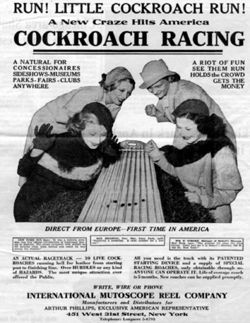 642_racing