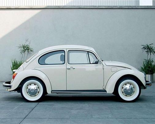a1070_beetle